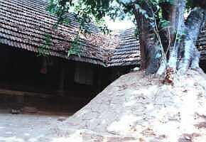 Snake-mound (Paambumputtu)