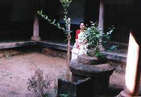 Jasmine platform (Mullathara)