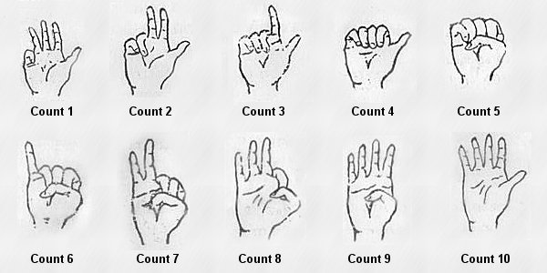 counting numbers with fingers